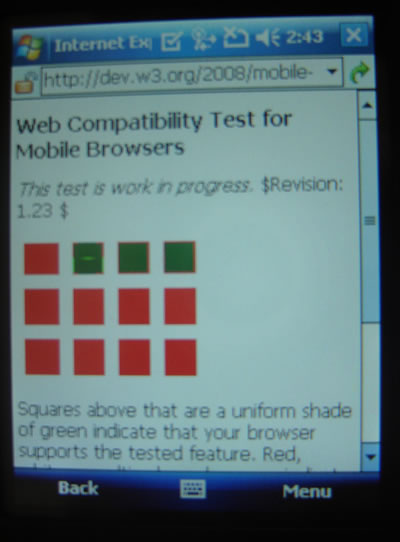 Windows Mobile 6 device using IEMobile 7.6